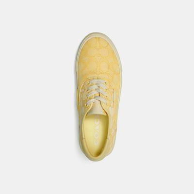 Citysole-Skate-Sneaker-Coach